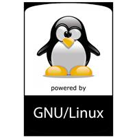 Hosting Empresarial Linux
